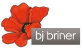BJ Briner
